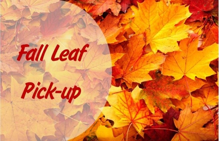 Newsflash Fall Leaf Pick Up